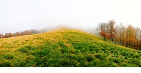 colline_automne.jpg